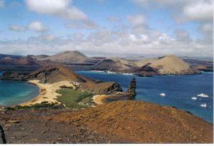 Caf� des Iles Galapagos